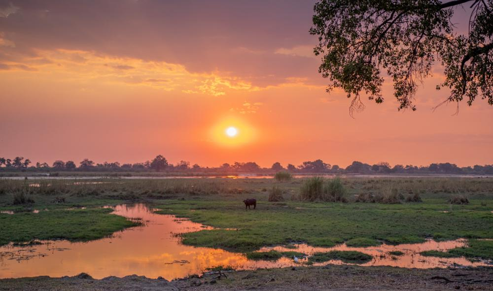 Les incontournables à voir en Namibie