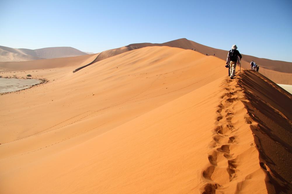 Les activités incontournables à faire en Namibie